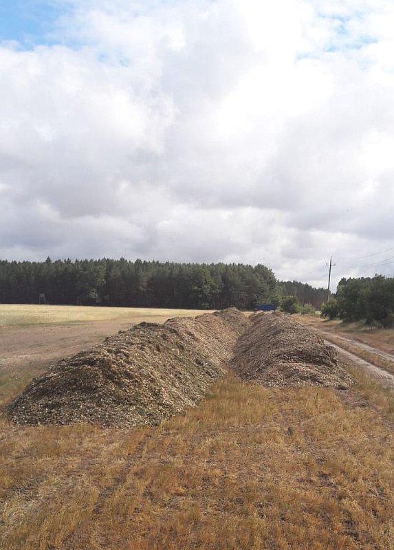 Baumfällungen Bauservice Altmark (8)